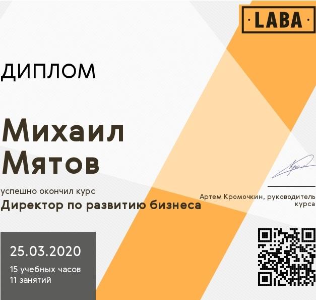 Мятов Михаил - директор по развитию бизнеса. Курс LABA.